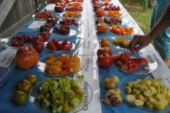 tomatotable